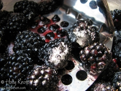 Sugared blackberries