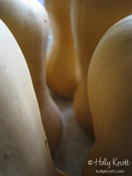 Butternut Squash abstract 1