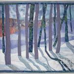 Snow Shadows 2